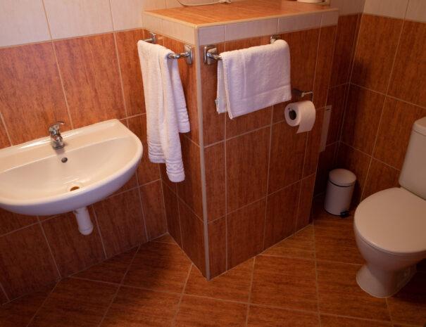 BA_koupelna